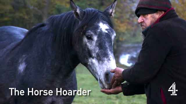 The Horse Hoarder